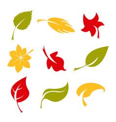 set of multicolor vector image