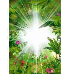 Tropical background beautiful vector