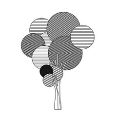 monochrome silhouette high tree plant with vector image vector image