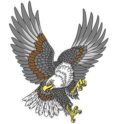 American whitehead bald eagle tattoo vector