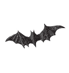 hand drawn bat with open wings isolated on white vector image