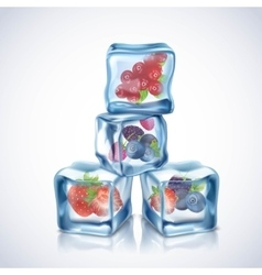 Ice Cubes With Berries vector image