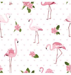 pink exotic flamingo birds tropical camelia vector image