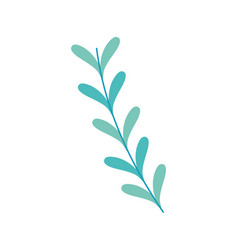 rustic natural branches plant with leaves vector image