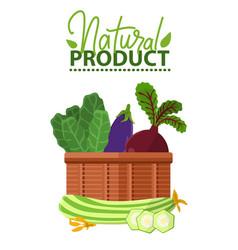 vegetables in basket vegan food organic vector image