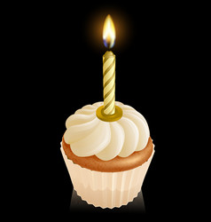 fairy cake cupcake with birthday candle vector image