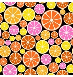 Seamless colorful pattern with citrus fruit vector image vector image