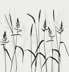 wild grass vector image vector image