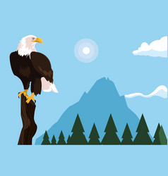 Bald eagle bird in the branch with landscape vector