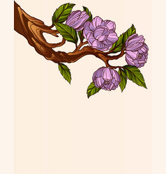 blooming magnolia branch vector image