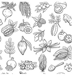 Hand drawn superfood seamless pattern vector