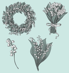 Set of lily of the valley drawings vector image