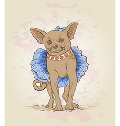 Small decorative dog vector image
