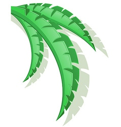 palm branch 03 vector image