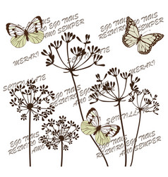 Botanical flowers vector