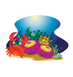Crab and reef vector