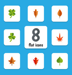Flat icon maple set of leaf linden aspen and vector
