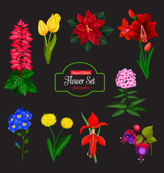 flower bouquet cartoon icon for floral design vector image
