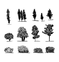 Set of trees black and white vector