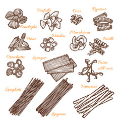 Sketch icons of italian pasta sorts vector