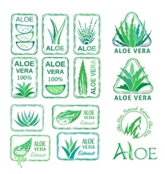 Aloe vera design elements Stencil style vector image