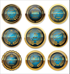Blue and gold medal collection vector