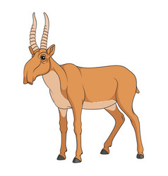color with saiga antelope vector image