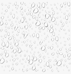 different realistic transparent water drops glass vector image