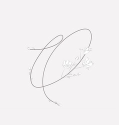 hand lettering floral o monogram and logo vector image