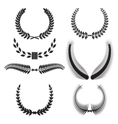 laurel wreath set vector image