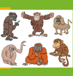 Monkeys and apes animal characters cartoon set vector