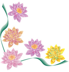 Multi-colored lotuses and green strips vector