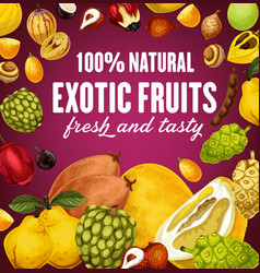 natural exotic fruits poster with vegetarian food vector image