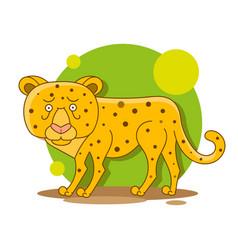 Zoo african fauna cougar leopard wild cat vector