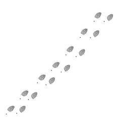 Footprint trail vector image vector image