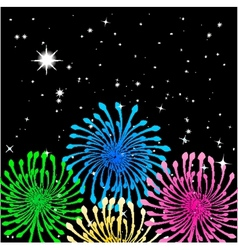 Colorful fireworks vector image