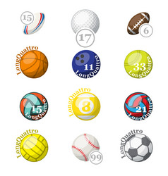 color sport balls with names and numbers vector image