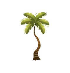 cute green beach palm tree on isolated island vector image