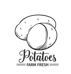 hand drawn potatoes icon vector image