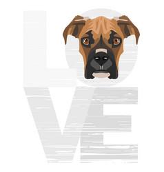 Love boxer vector