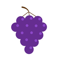 fresh grape brunch icon healthy food lifestyle vector image vector image