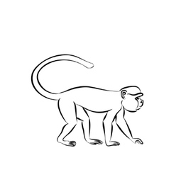 monkey sitting on a branch vector image