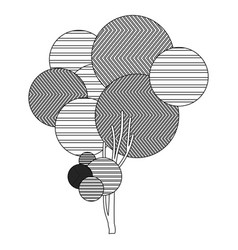 Monochrome sketch high leafy tree plant vector