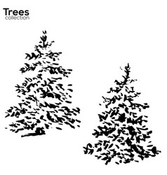 trees collection ink fir silhouettes vector image vector image