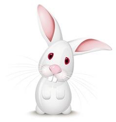 Little rabbit vector