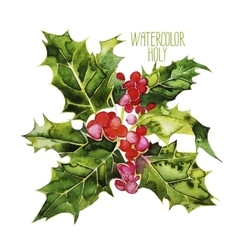 Watercolor cranberries vector
