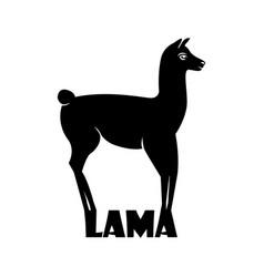 animal logo lama lama silhouette vector image