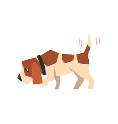 beagle dog searching for a trace and wagging its vector image