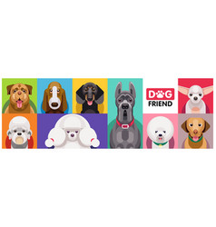 Dog breeds flat icons horizontal vector