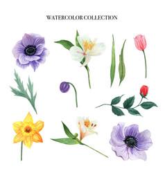 Flower watercolor set design element on white vector